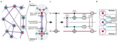 A network overview of the modular quantum architecture demonstrated in the new study.